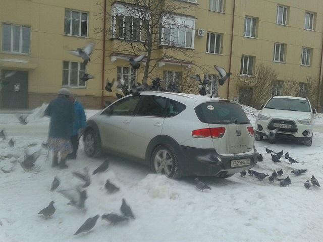 Новоуральские бабушки придумали, как бороться с неправильной парковкой