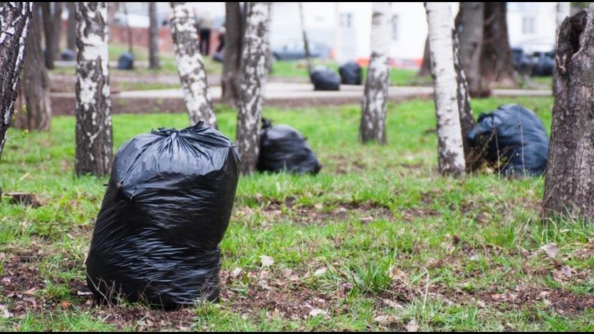 В Новоуральске стартовали осенние субботники
