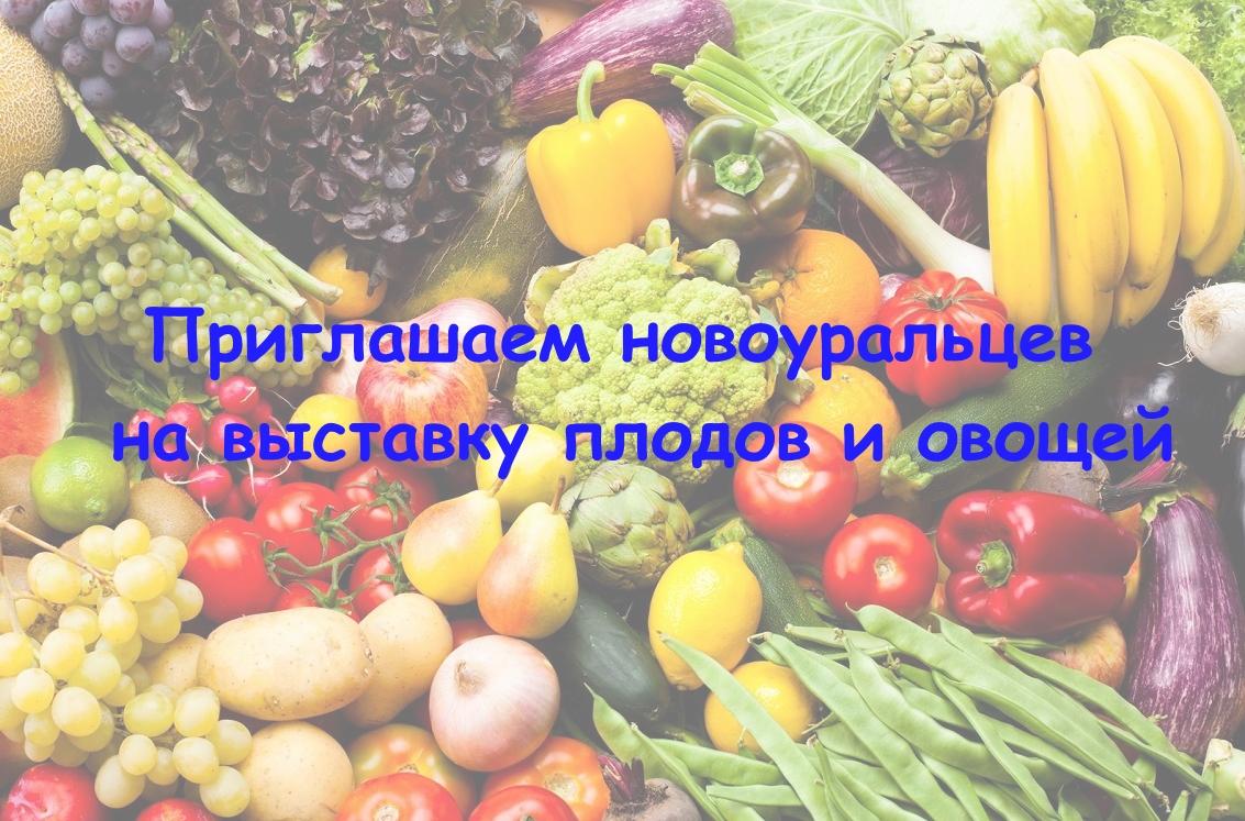 Выставка плодов и овощей «Осень 2017»