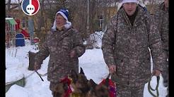 Веселые старты, цирковое представление и сладкие подарки, а в упряжке Деда Мороза не лошади, а собаки!