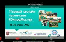 Ученики лицея №58 завоевали пьедестал почета на федеральном онлайн чемпионате «ЮниорМастер»