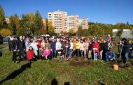 Яблоневый сад к юбилею атомной отрасли