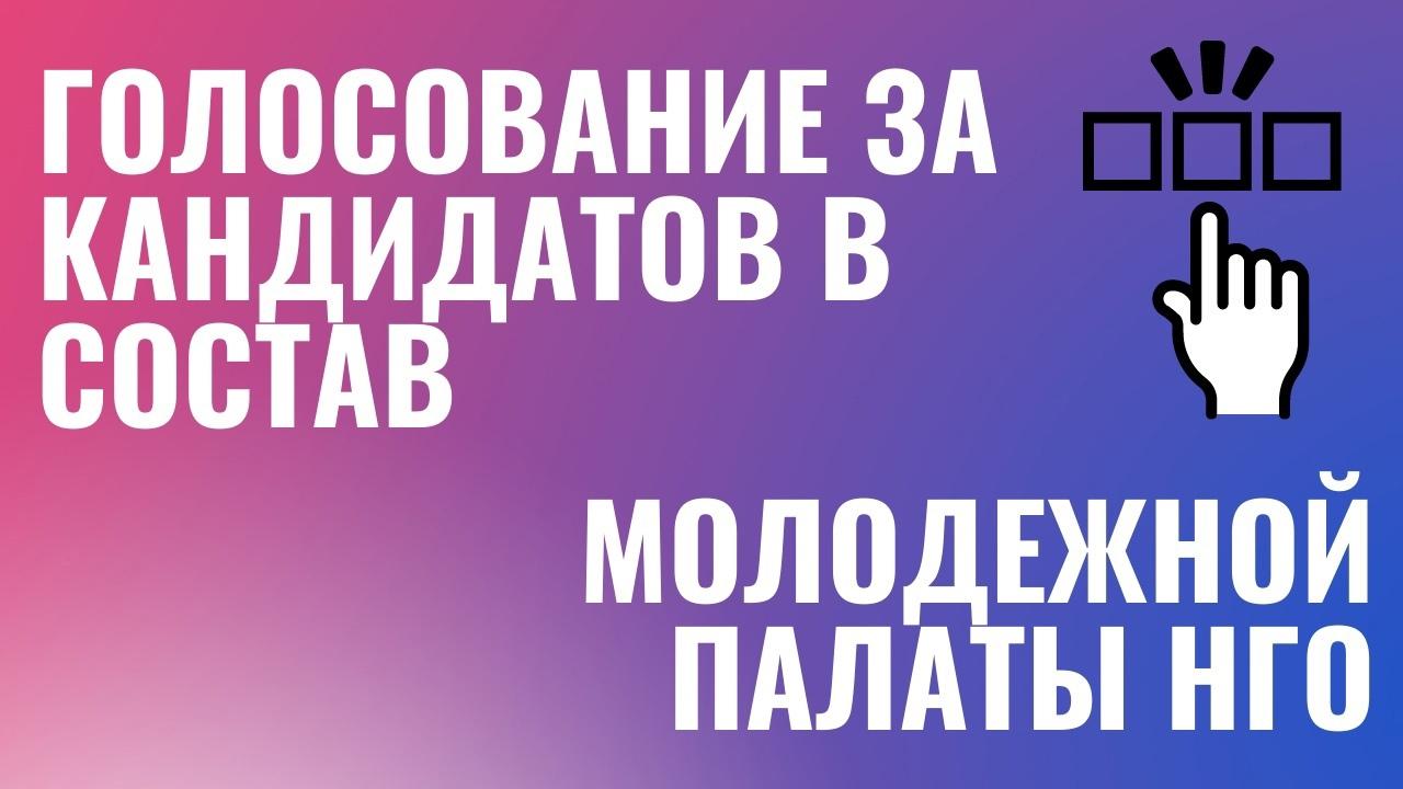 Стартовал заключительный этап формирования Молодежной палаты Новоуральского городского округа